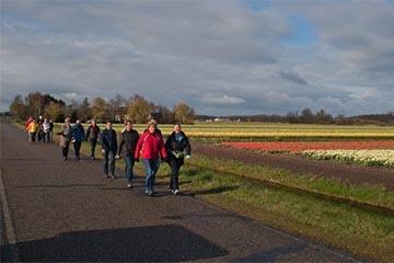 10.000 stappen wandelingen in de Bollenstreek